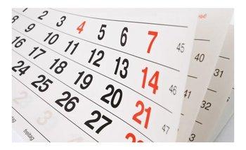 ¿Es trasladable el feriado del 8 de diciembre? | Feriados
