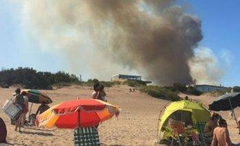 Importante incendio forestal en Villa Gesell   Verano 2019