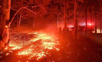 El humo de los incendios de Australia llegó a Argentina | Catástrofe ambiental