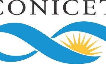 Aumentaron un 15% el otorgamiento de becas del Conicet  | Ciencia