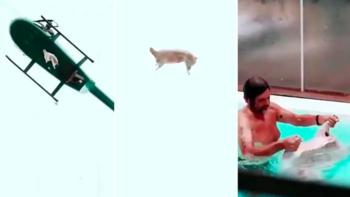 Nuevo video del cordero que complica Álvarez Castillo | Infraganti