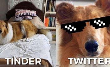 Dylan es furor en las redes sociales con el meme del momento | Dylan fernandez