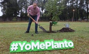 Fernando Gray lanzó un Programa de Forestación | Provincia