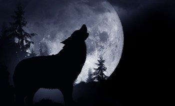 Luna de Lobo: ¿qué significado tiene y por qué se llama de esa manera? | Astronomia