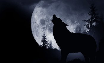 Luna de Lobo 2021: Cómo y cuándo verla en el cielo | Fenómenos naturales