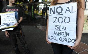 Denuncian al director del zoo porteño por tráfico de animales | Auditoría general de la ciudad de buenos aires