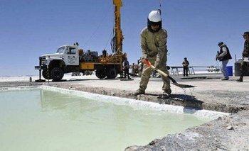 El oficialismo avanza en declarar al litio como recurso de interés público | Minería
