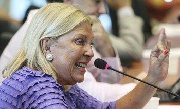 """Carrió ya """"informó"""" a la OEA sobre """"la necesidad de defender la institucionalidad republicana en Argentina""""   Elisa carrió"""