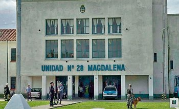 Cárcel de Magdalena: Un preso fue internado por un caso de hantavirus   Hantavirus