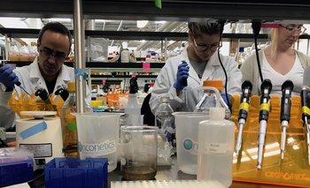 Hallazgo clave de científicos de Conicet | Coronavirus