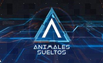 Así será Animales Sueltos: publican foto del programa | Animales sueltos