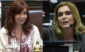 El tenso cruce reglamentario de CFK con una senadora radical | Defensora del niño