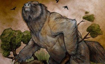 Encuentran restos fósiles de un perezoso gigante en Jujuy | Arqueología