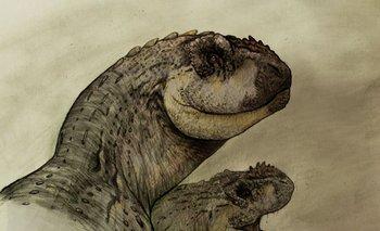 Hallaron en Rio Negro un nuevo dinosaurio carnívoro de 70 millones de años | Dinosaurios