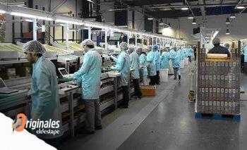 Contra la operación del éxodo de empresas, crecen las inversiones en el país | Reactivación económica