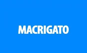 """""""Macrisis"""", """"Macri gato"""" y """"Maldonado"""": el insólito primer spot de campaña de Cambiemos   Cambiemos"""