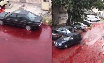 Un frigorífico derramó 500 mil litros de sangre en la calle | Video