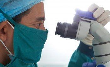 Coronavirus en fotos: así se ve el COVID-19 en el cuerpo humano   Ciencia