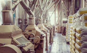 Molinos argentinos exportarán 10.000 toneladas de harina a Cuba tras 15 años | Cuba