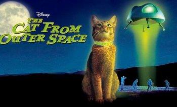 Diez películas que Disney+ mantiene ocultas de su oferta principal   Cine