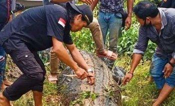 Sacaron el cuerpo de un nene de 8 años del estómago de un cocodrilo | Indonesia