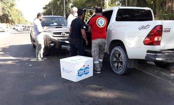 El ministro de Salud de Corrientes se descompensó y chocó una camioneta con vacunas   Vacuna del coronavirus