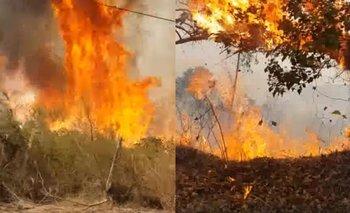 Incendios forestales azotan las sierras de Tandil | Incendios
