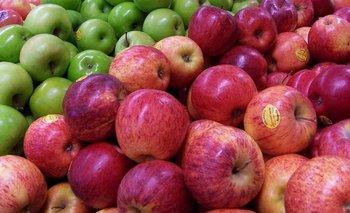 Importaciones de manzana acechan a los productores del Alto Valle de Río Negro | Campo