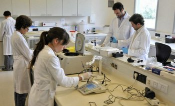 Científica del Conicet explicó hallazgo clave  | Coronavirus
