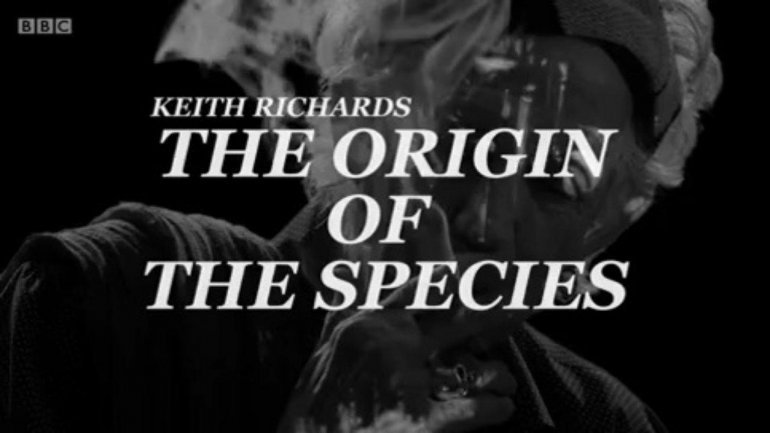 <div>Keith Richards: The Origin Of The Species</div>