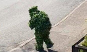 Un hombre se disfrazó de árbol para violar la cuarentena | En redes