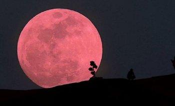 Cómo será y cómo ver el fenómeno de la súper luna llena rosa | Atr