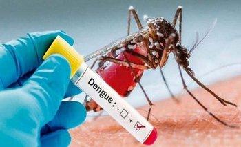En 9 meses, 43.497 personas contrajeron dengue u otros virus | Salud