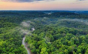 Por la deforestación, partes del Amazonas emiten más dióxido de carbono del que absorben | Cambio climático