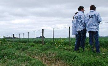 ARBA detectó que el campo evadió impuestos por $354 millones | Provincia de buenos aires