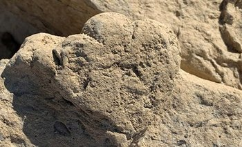 Descubren increíble huella de un dinosaurio del tamaño de un gato | Fenómenos naturales