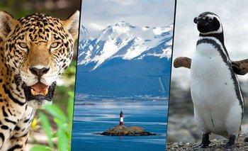 Día de la Tierra: cómo es la biodiversidad en Argentina | Día de la tierra
