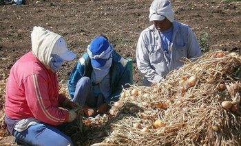 Trata de personas: el trabajo esclavo representa la mitad de las víctimas   Julio alak