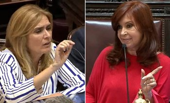 Demoledora respuesta de CFK a Elías de Pérez | Congreso