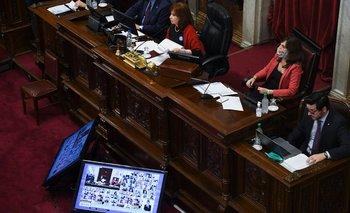 El Senado aprobó las primeras leyes de la pandemia | Coronavirus en argentina