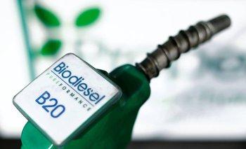 Argentina apelará el fallo de EEUU que impone aranceles al biodiésel | Cancillería