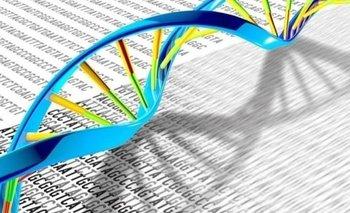 Descubren nuevas variantes genéticas de trastornos del neurodesarrollo | Salud mental