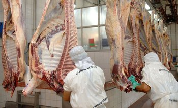 Concluye el cese de comercialización de carnes  | Carne
