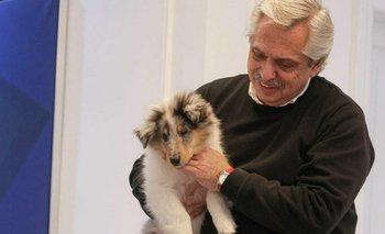 Se agranda la Casa Rosada: Alberto presentó a su nueva mascota | Casa rosada