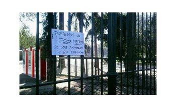 La Ciudad cierra el zoo porteño: ¿Qué se debe hacer ahora? | Horacio rodríguez larreta