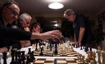 Un torneo de ajedrez podría desatar un conflicto internacional por Malvinas | Islas malvinas