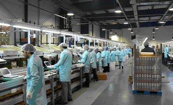 La industria se derrumbó casi un 9% en abril | Crisis económica