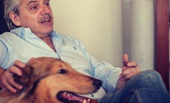 La insólita pregunta a Alberto Fernández sobre su perro | Alberto presidente