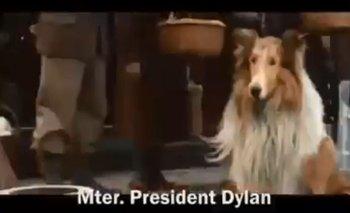 El primer spot de campaña de Dylan Fernández | Elecciones 2019