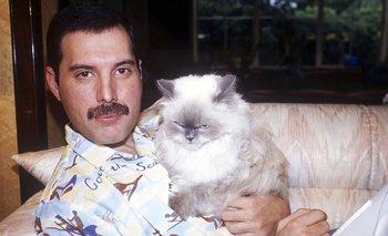 Furor por el video inédito de Freddie Mercury | Música